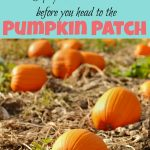 5 Tips You Should Know Before You Go To The Pumpkin Patch
