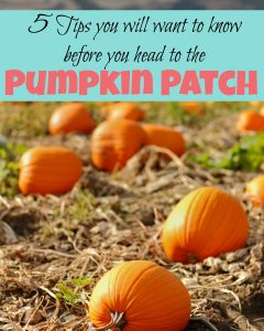 5 tips that will make your day at the pumpkin patch even more fun