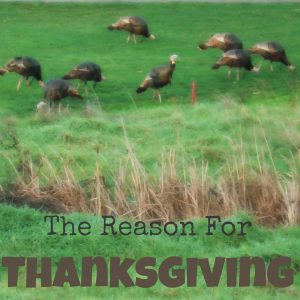The Reason For Thanksgiving