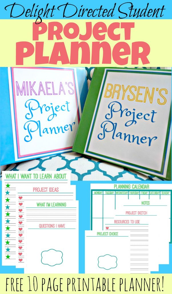 Delight directed student project planner