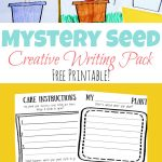 Mystery Seed Creative Writing Pack